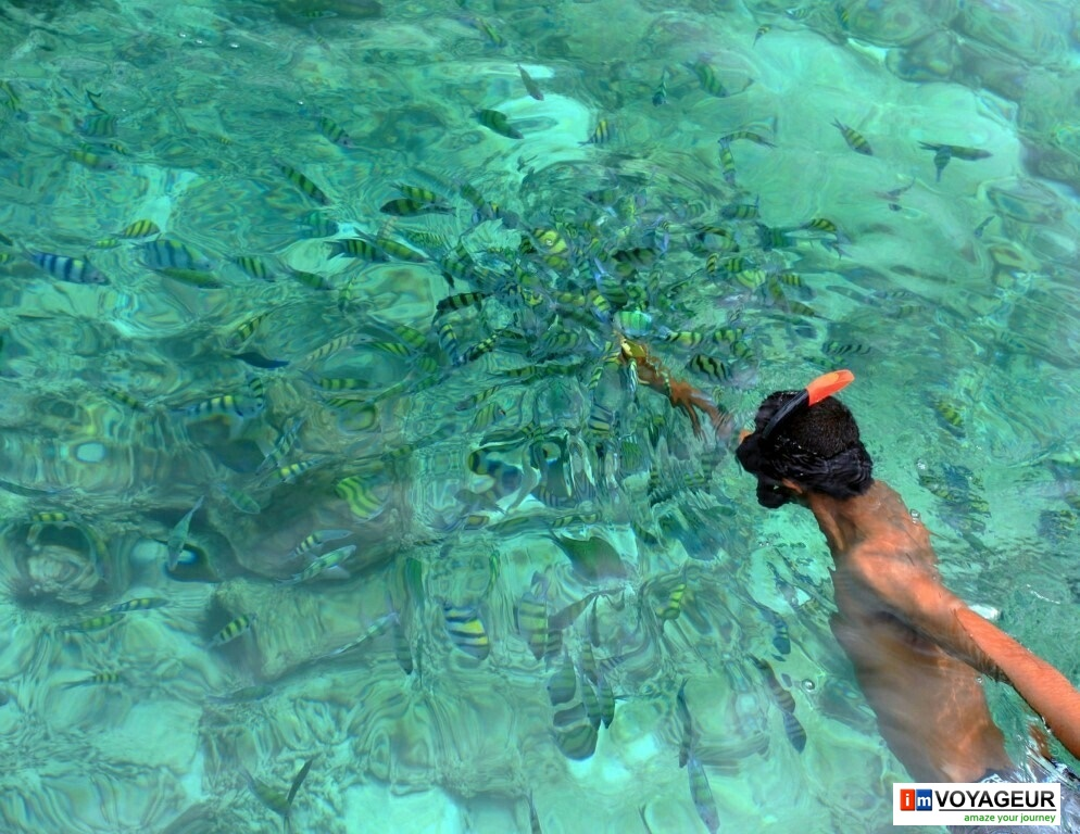 Phi Phi island (54)